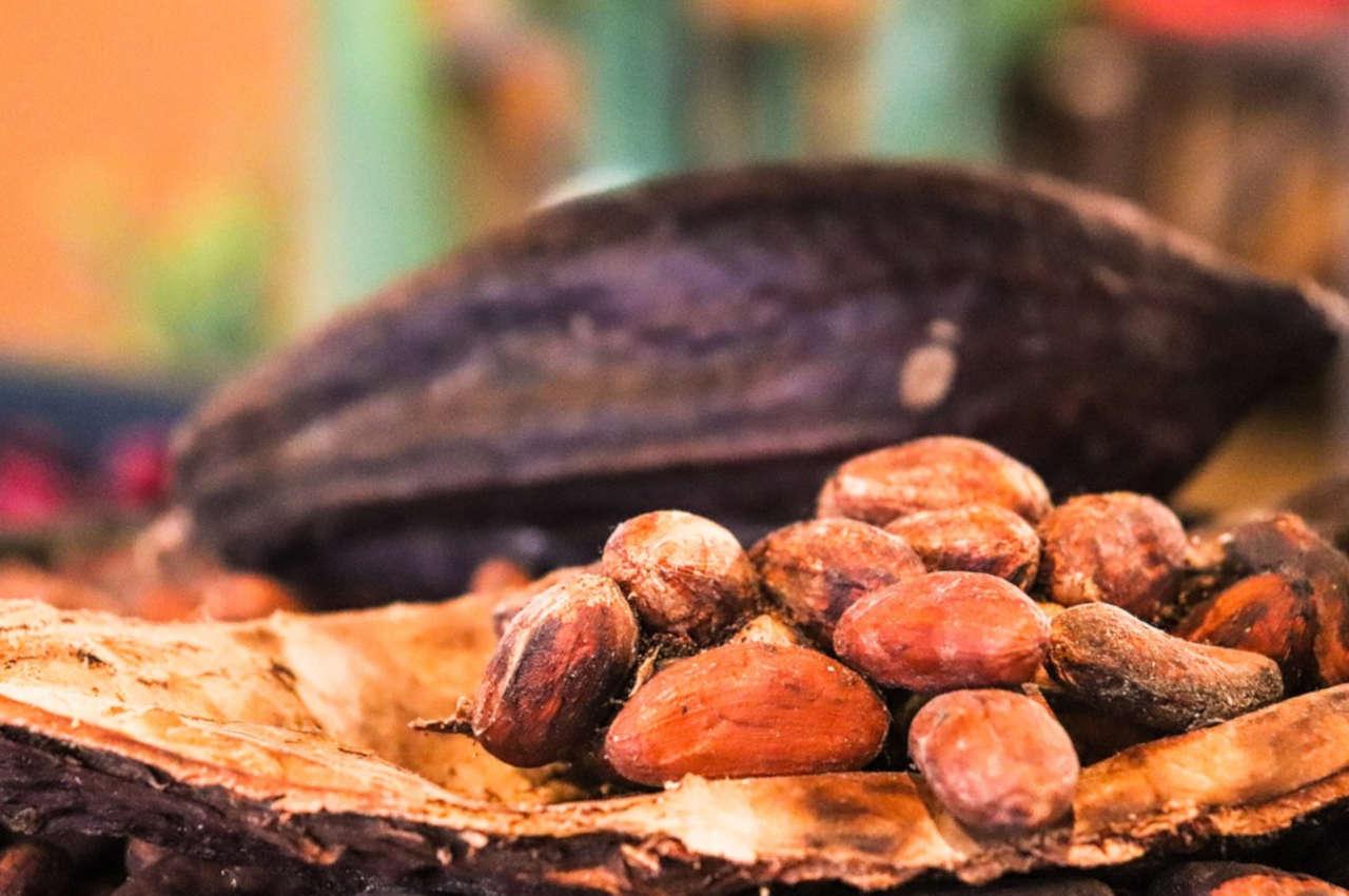 Les bienfaits du cacao sur la santé